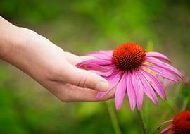 Ervaringsverhalen met homeopathie