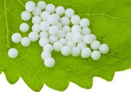 16-11: Cursus: Zelf aan de slag met Homeopathie (Heemstede)