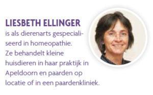 Liesbeth Ellinger