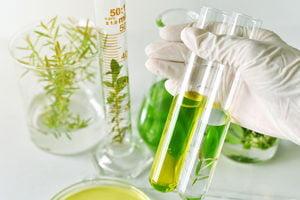 Meerderheid Nederlandse bevolking wil dat overheid investeert in onderzoek naar effect alternatieve geneeswijzen