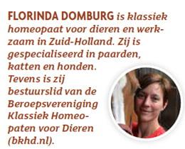 Florinda Domburg