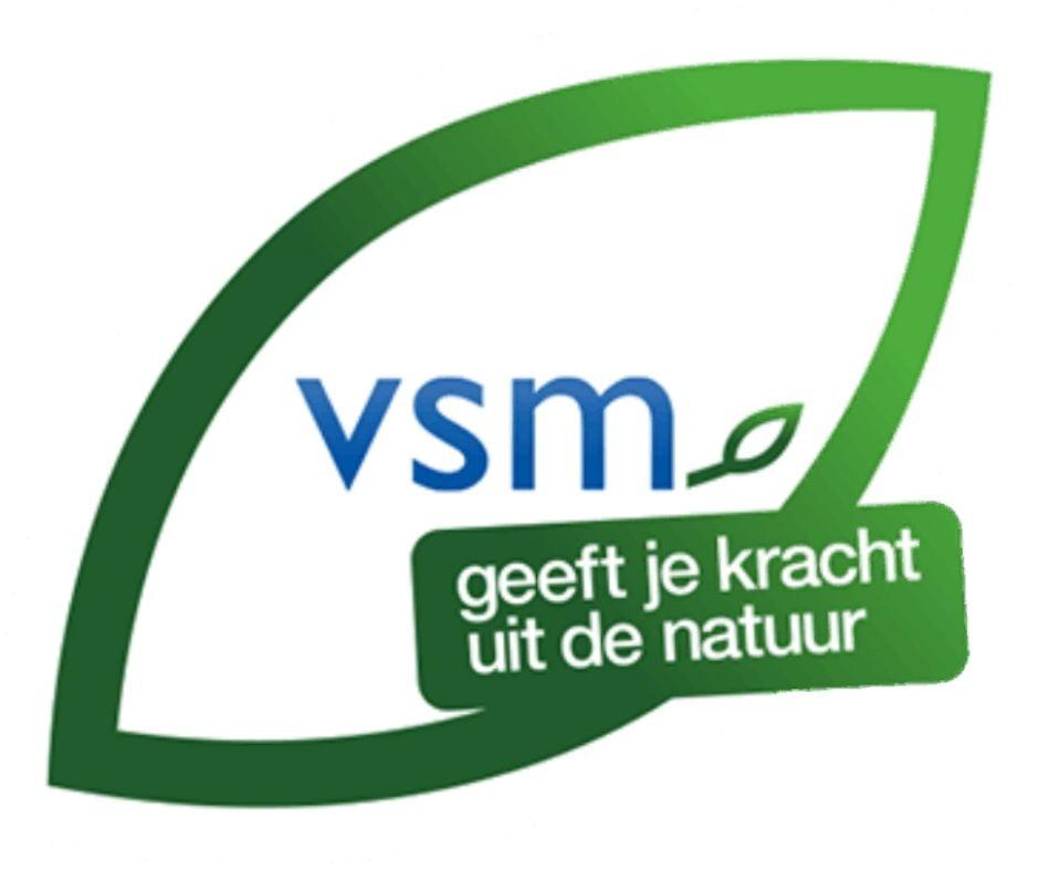 Logo VSM