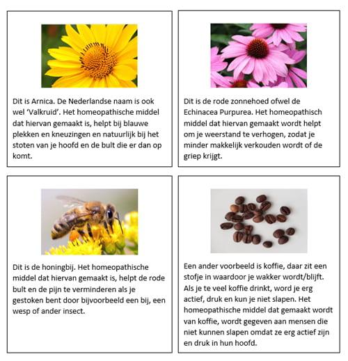 Voorbeelden homeopathische middelen spreekbeurt