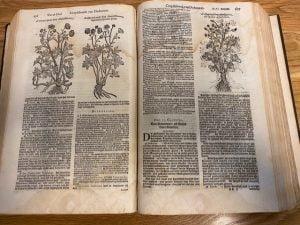 Cruydtboeck Rembertus Dodonaeus - Hortus Alkmaar