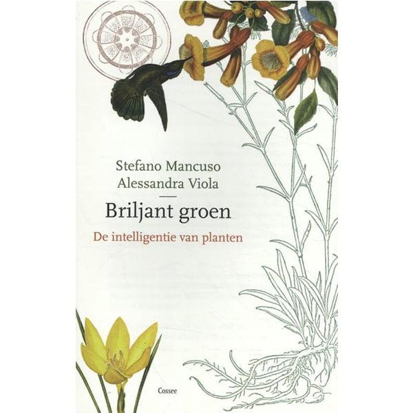 Briljant Groen